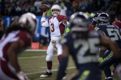 Cardinals quarterback Carson Palmer (3) completes a pass to receiver Larry Fitzgerald, left, Nov. 15 during Arizona's 39-32 win at CenturyLink Field in Seattle.