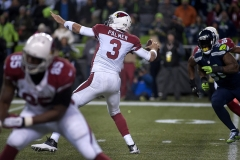 Cardinals quarterback Carson Palmer (3) launches a pass downfield Nov. 15 during Arizona's 39-32 win at CenturyLink Field in Seattle.